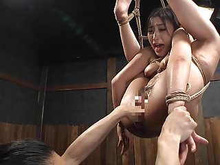 tied up japan bdsm